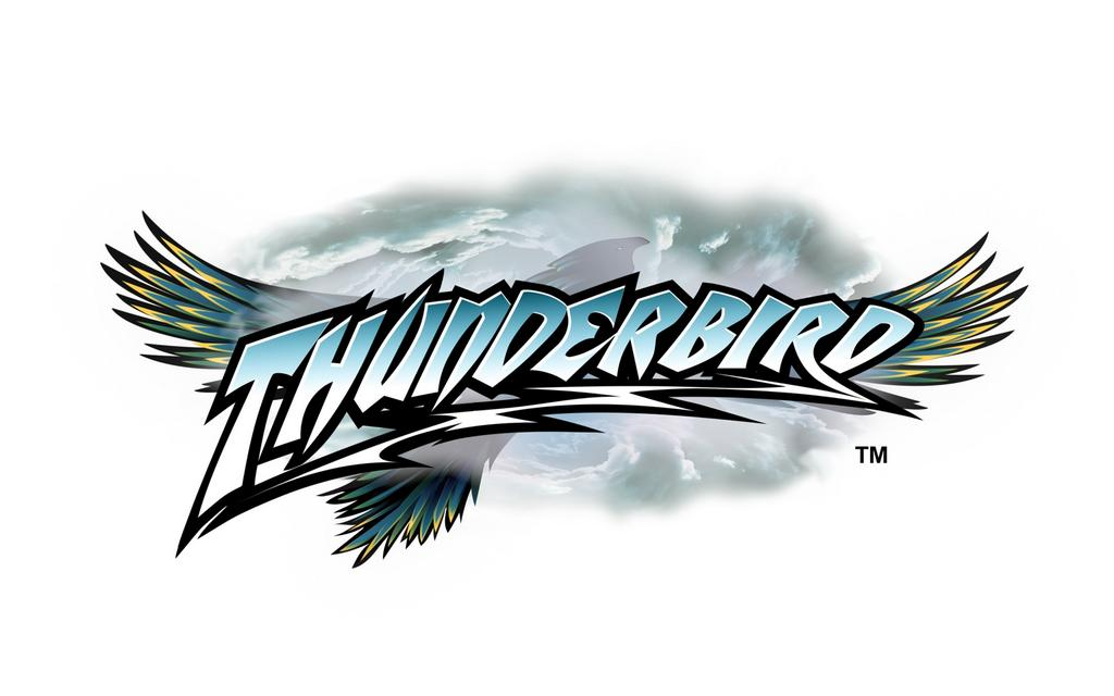 "My Initial Thoughts on Holiday World's ""Thunderbird"""